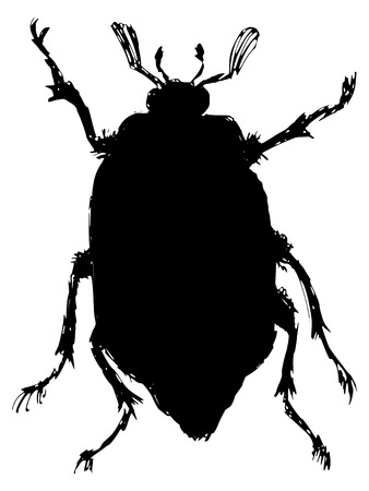 scavenging: black silhouette of chafer Illustration