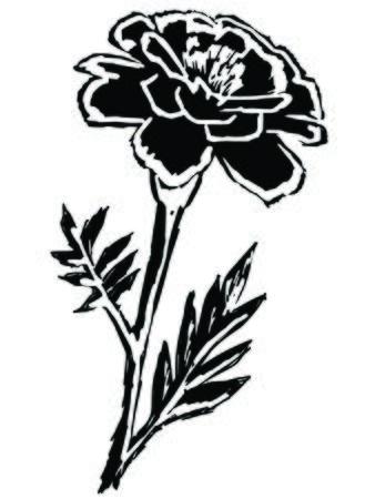 cempasuchil: negro silueta de cal�ndula