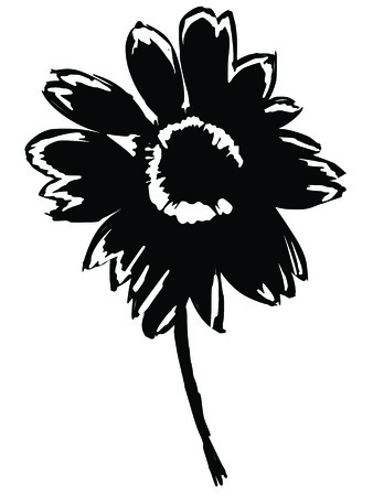 aster: black silhouette of aster Illustration