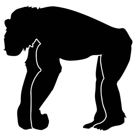 silhouette of chimpanzee