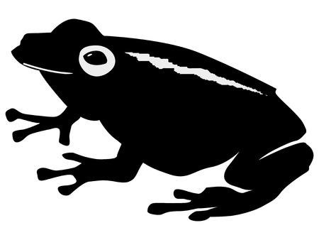 ranitomeya: silhouette of frog