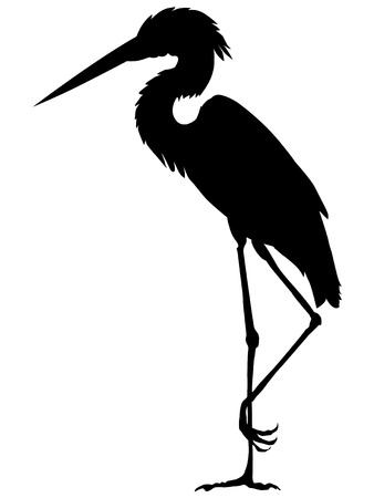 water birds: silhouette of heron