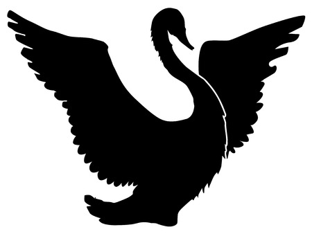 swan: silhouette of swan Illustration