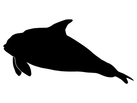 orca: silhouette of orca