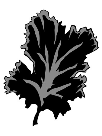 sea anemone: silhouette of seaweed