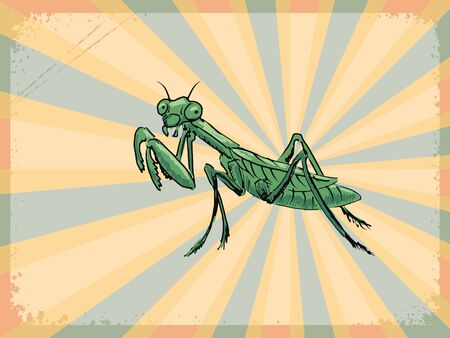 mantis: vintage, grunge background with mantis Illustration