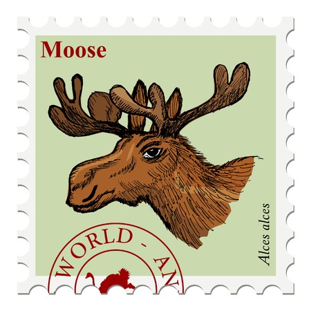 postage stamps: vector, post stamp with moose, wildlife motive