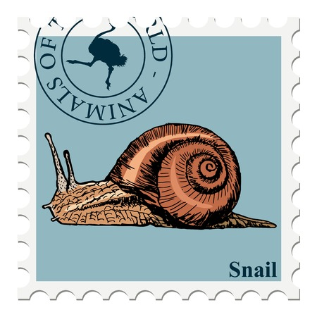 snail: vector, post stamp with snail