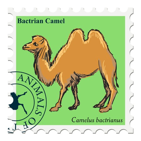camel post: vector, post stamp with camel