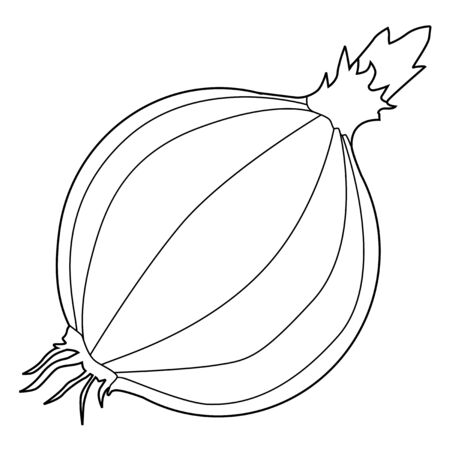 ingredient: outline illustration of onion, ingredient for meals
