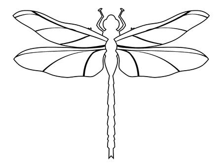 illustrazione di contorno di libellula, vista dall'alto Vettoriali