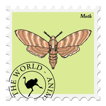 moth: vector, post stamp with moth