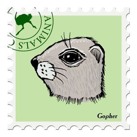 gopher: vector, post stamp with gopher