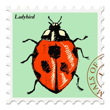 ladybird: vector, post stamp with ladybird Illustration