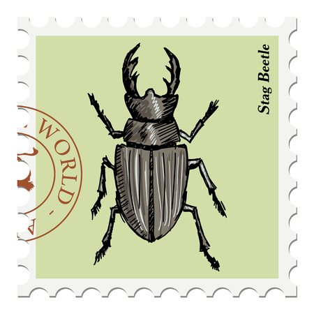 stag beetle: vector, post stamp with stag beetle
