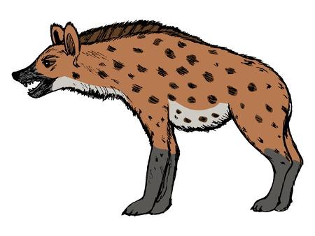 national parks: illustration of hyena