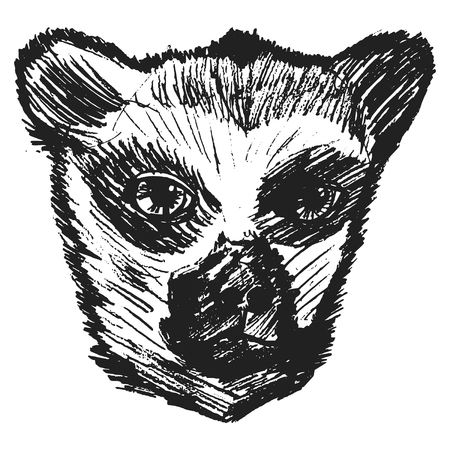 lemur: illustration of lemur