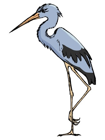 wildlife: heron, illustration of wildlife, zoo, animal of water, bird