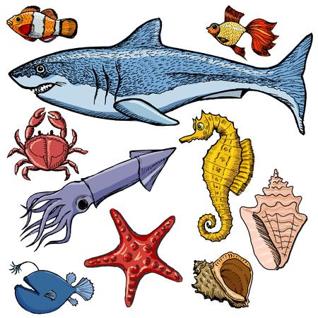 ecosistema: Conjunto de animales de mar con tiburones, cangrejos, calamares