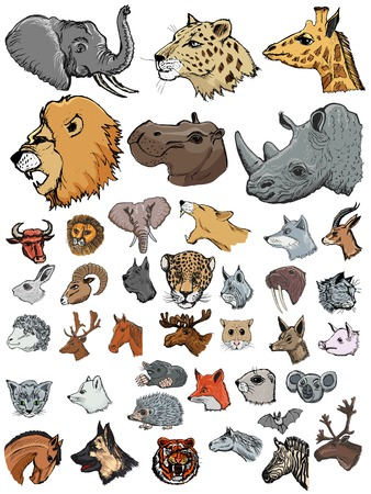 farm animals: set of illustrations of different kinds of mammals