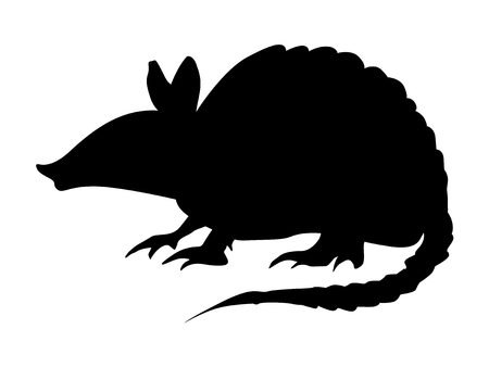 A silhouette of pangolin