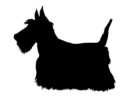 A silhouette of Scottish terrier Çizim