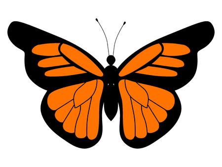 vector illustration of monarch butterfly Illustration
