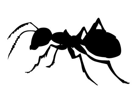 普通の蟻のシルエット  イラスト・ベクター素材