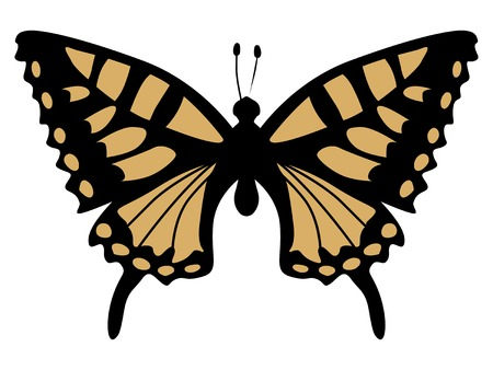 Silhouette of swallowtail butterfly