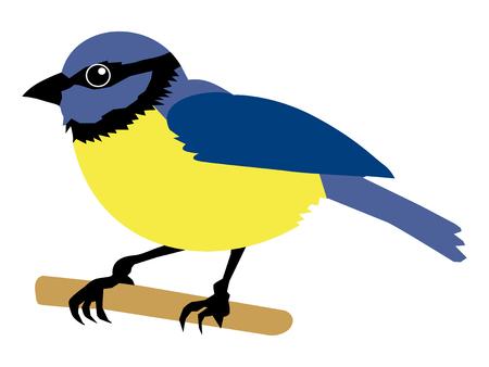 vector illustration of tit bird