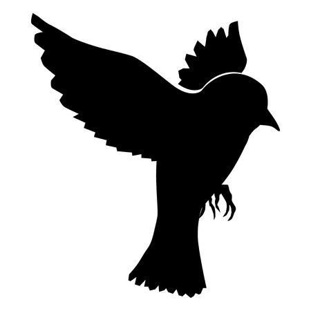 silhouette of sparrow