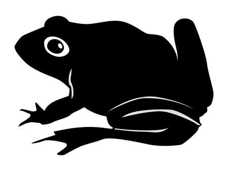 silhouette of toad