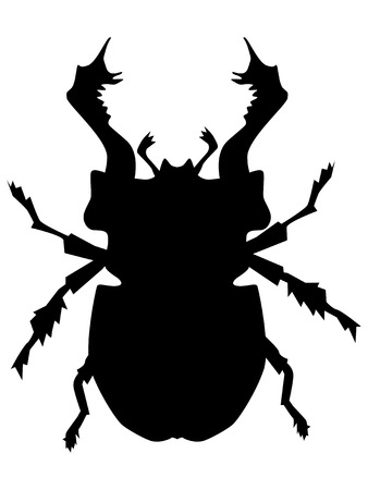 silhouette of stag bug