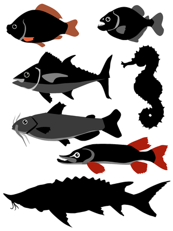 crucian carp: silhouettes of fishes Illustration
