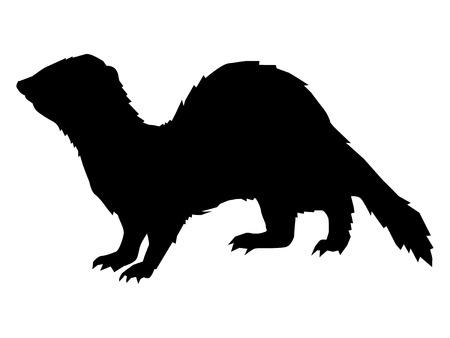 black silhouette of ferret, side view Illustration