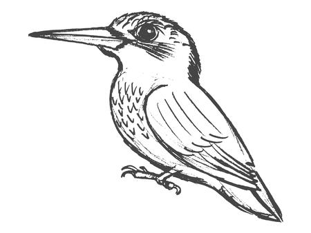vettore, schizzo, disegnato a mano illustrazione di marinaro