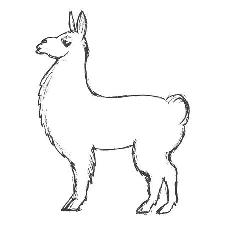 Vektor, Skizze, Hand gezeichnete Illustration von Lama Standard-Bild - 87420747