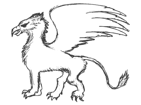 vector, sketch, hand drawn illustration of griffin