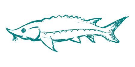 vettore, schizzo, illustrazione a mano illustrazione dello storione