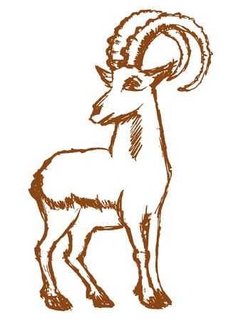Vektor, Skizze, handgezeichnete Abbildung der Bergziege Standard-Bild - 87469038