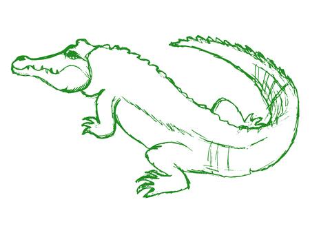 Vettore, schizzo, illustrazione a mano illustrazione del coccodrillo Archivio Fotografico - 87469041