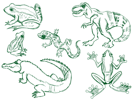 set of sketches of different reptiles Illustration