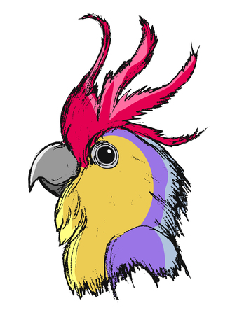 vector, coloured, sketch, hand drawn image of macaw