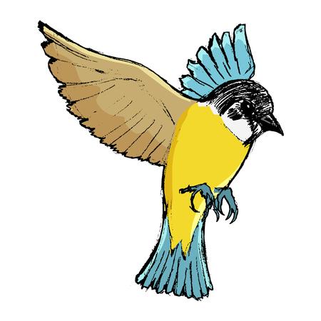 vector, color, dibujo, imagen dibujada a mano de pájaro tit