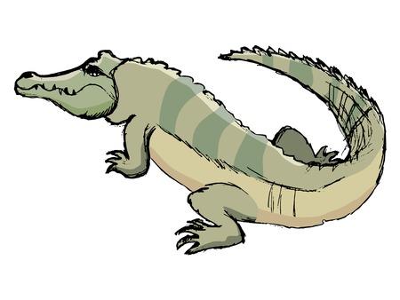 Schizzo di coccodrillo, illustrazione della fauna selvatica, zoo, animali Archivio Fotografico - 89112892