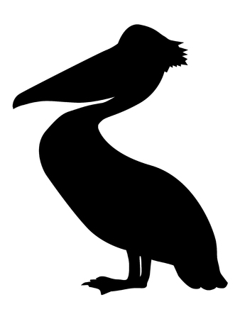 Pelican, silhouette of wildlife, birds and  sea.