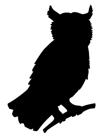 Owl, silhouette of forest, animals, wildlife