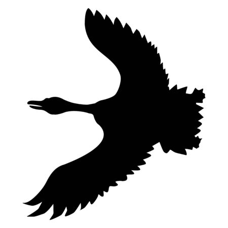 Vector silhouette of flying goose. Motives of wildlife, nature, seasons, birds Ilustrace