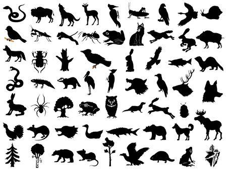 Grand ensemble de silhouettes vectorielles d'animaux, de plantes et de paysages. Motifs de la faune, de la nature, de la sauvegarde de l'environnement, de la forêt, de la chasse, du repos, des bois d'Europe et d'Amérique du Nord