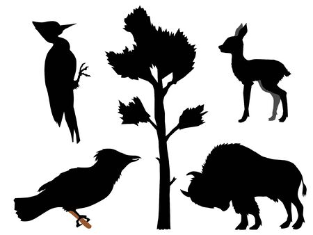 Set of silhouettes with different kinds of animals. Motives of wood, nature, wildlife, European forest . Buffalo, deer cub, woodpecker, jay Stock Illustratie